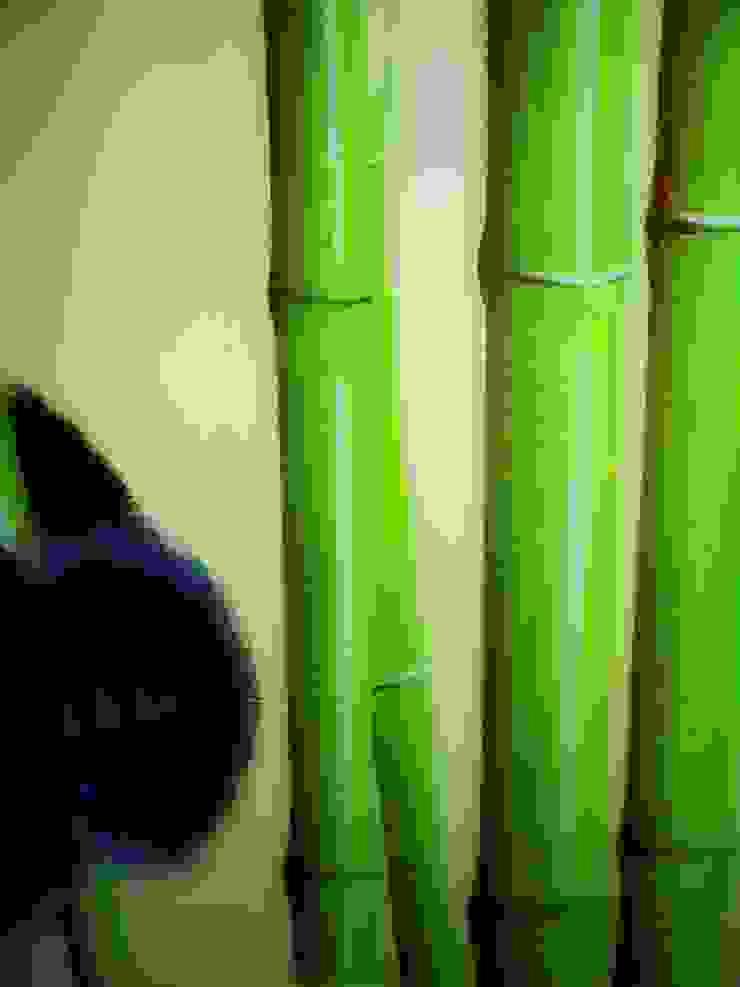 """Panda"" di Rusnac Art Asiatico"