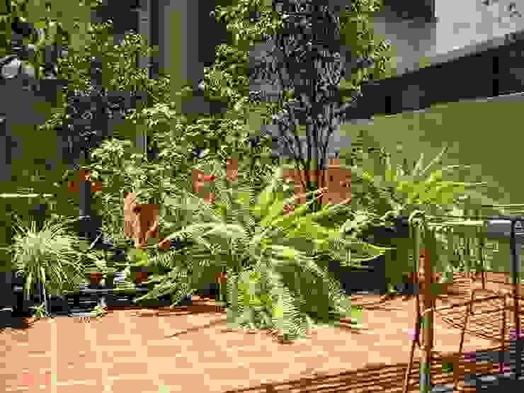 Jardín Giuntoli: Jardines de estilo  por Dhena CONSTRUCCION DE JARDINES,Moderno Vidrio