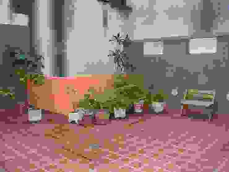 Jardin moderne par Dhena CONSTRUCCION DE JARDINES Moderne Verre
