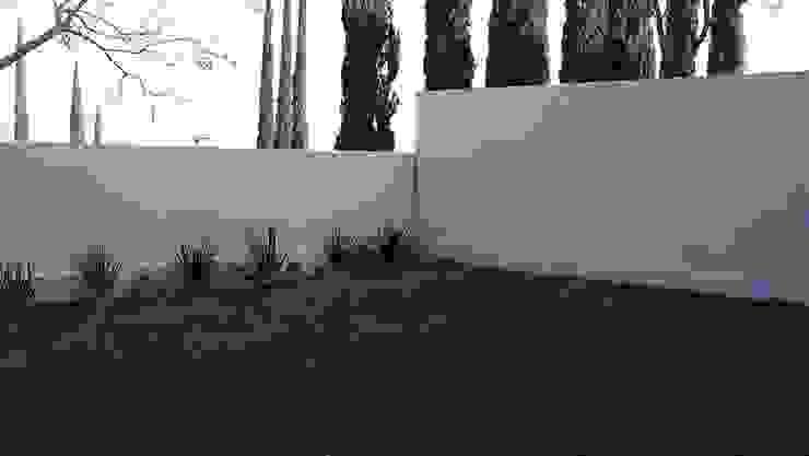 Residencias LV Jardines modernos de CH Proyectos Moderno