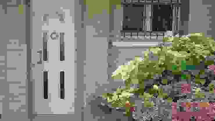 Tecno Metal Professional Welding Windows & doors Doors