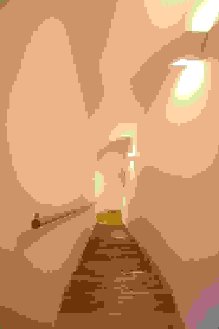 Koridor & Tangga Modern Oleh atelier m Modern Kayu Wood effect