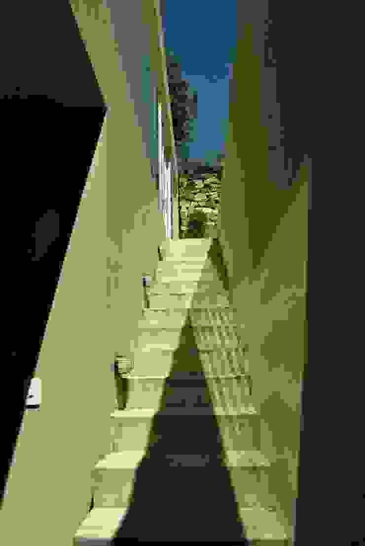 Casa Vittoria Prima Pasillos, vestíbulos y escaleras de estilo moderno de Javier Pareja arquiteco Moderno