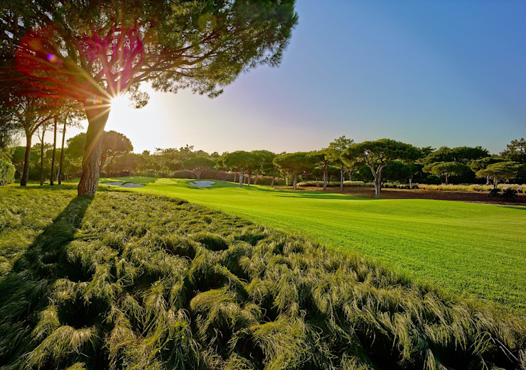 Envolventes do campo de golf por Ecossistemas