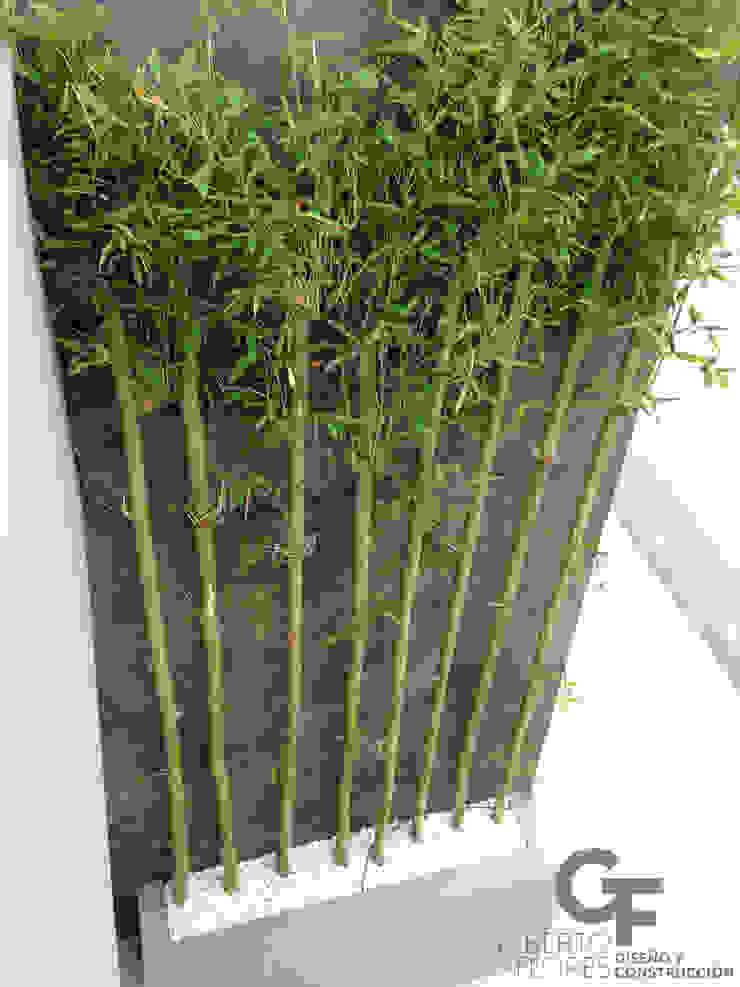 Giardino moderno di GF ARQUITECTOS Moderno Bambù Verde