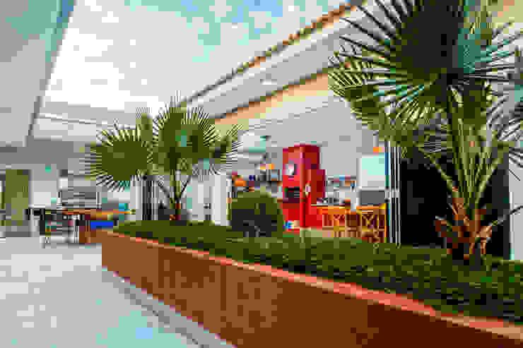 Jardines de estilo moderno de Daniele Galante Arquitetura Moderno