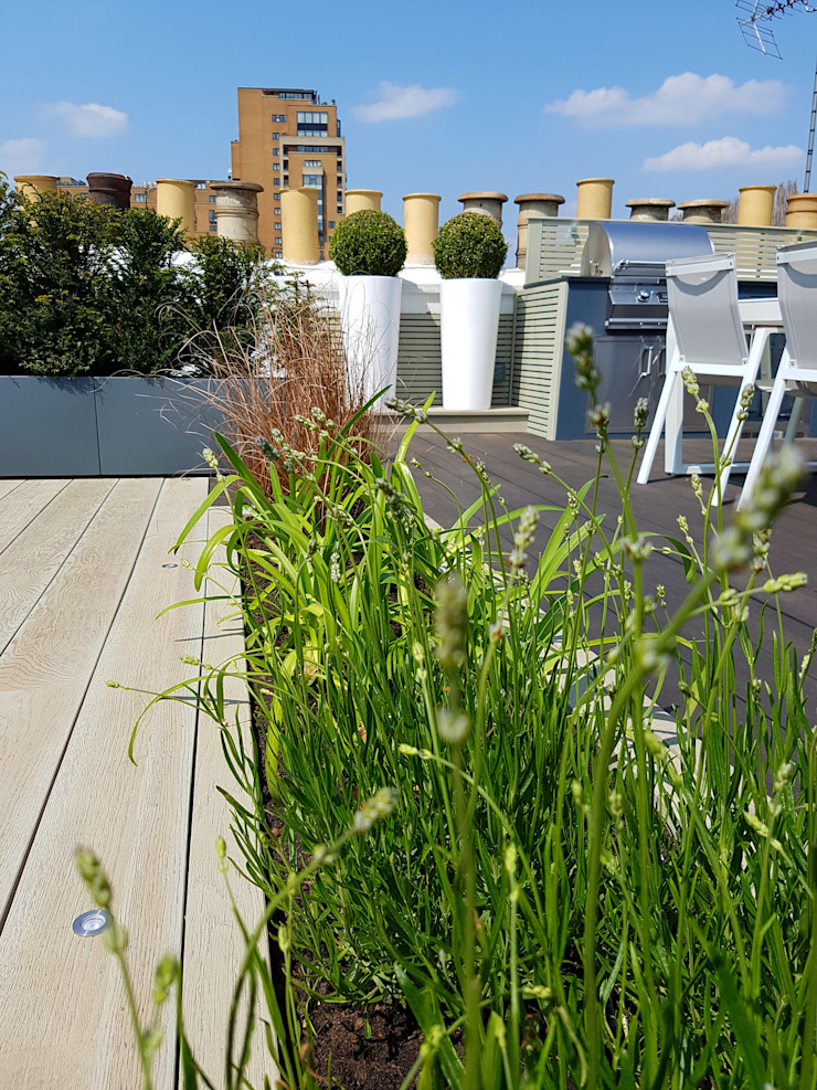 South Kensington roof terrace Modern balcony, veranda & terrace by Paul Newman Landscapes Modern Wood-Plastic Composite