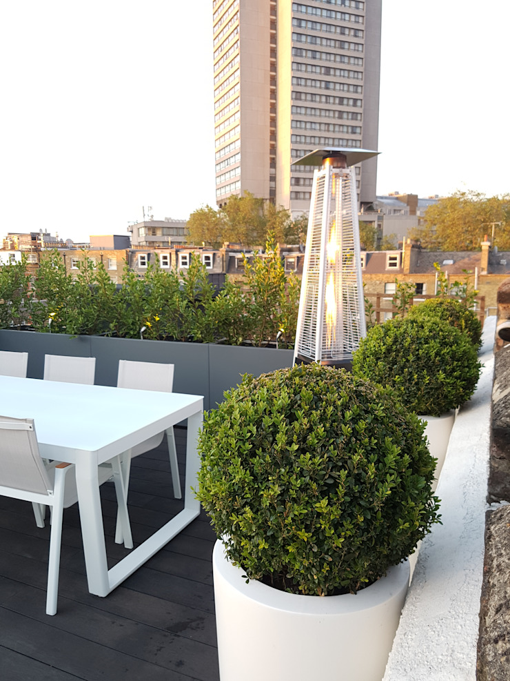 South Kensington roof terrace Modern balcony, veranda & terrace by Paul Newman Landscapes Modern