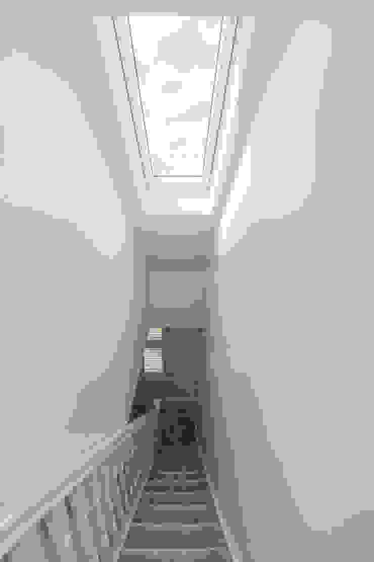 A roof window to brighten up the hallway! الممر الحديث، المدخل و الدرج من The Market Design & Build حداثي