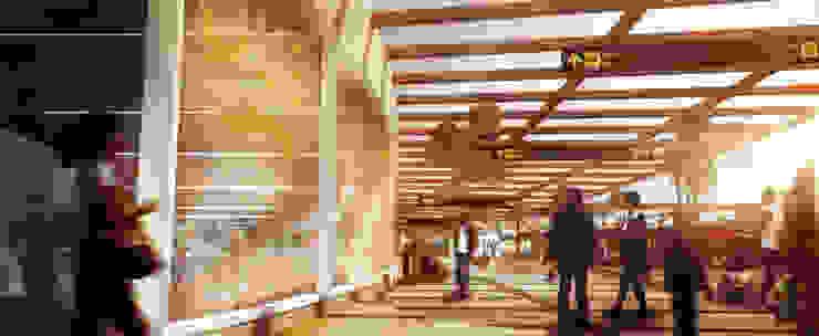 Terminal Terrestre Cascajal de Célula Visual