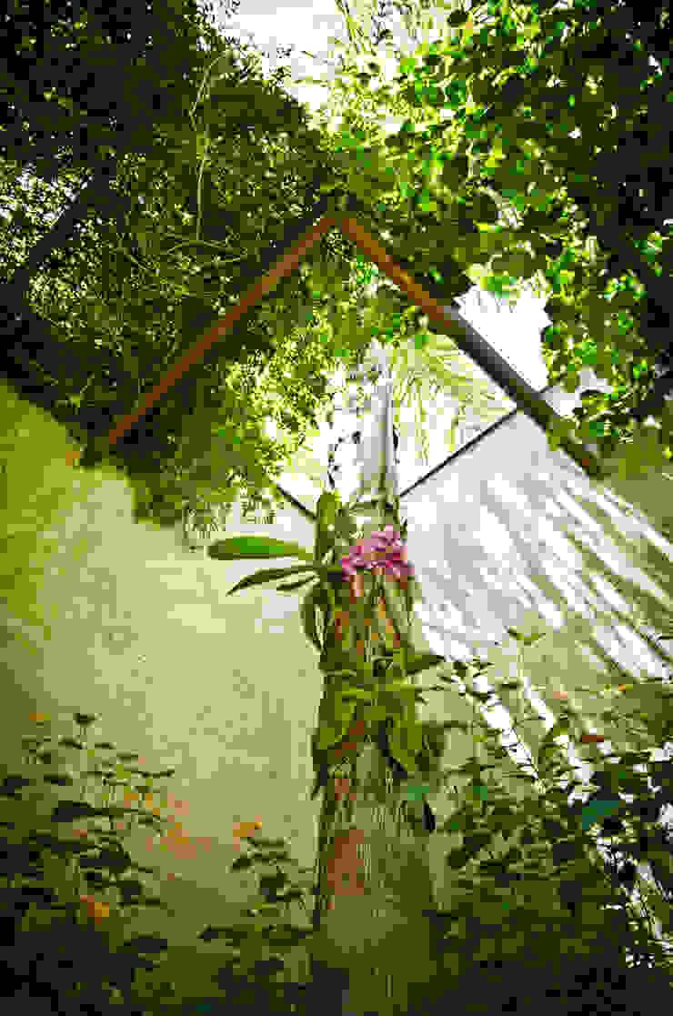 Jardin rustique par Felipe Mascarenhas Paisagismo Rustique
