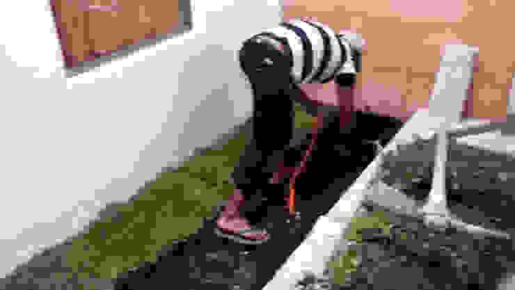 Detalles jardinería de RecreARQ Construcciones