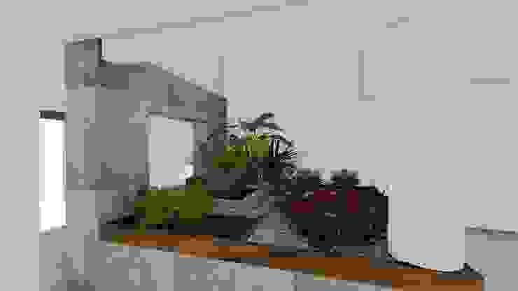 Minimalist style garden by A-labastrum arquitectos Minimalist Limestone