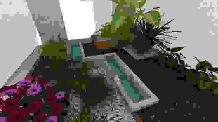 jardin interior Jardines minimalistas de A-labastrum arquitectos Minimalista