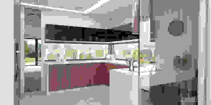 Cocinas modernas: Ideas, imágenes y decoración de HomeKONCEPT | Projekty Domów Nowoczesnych Moderno