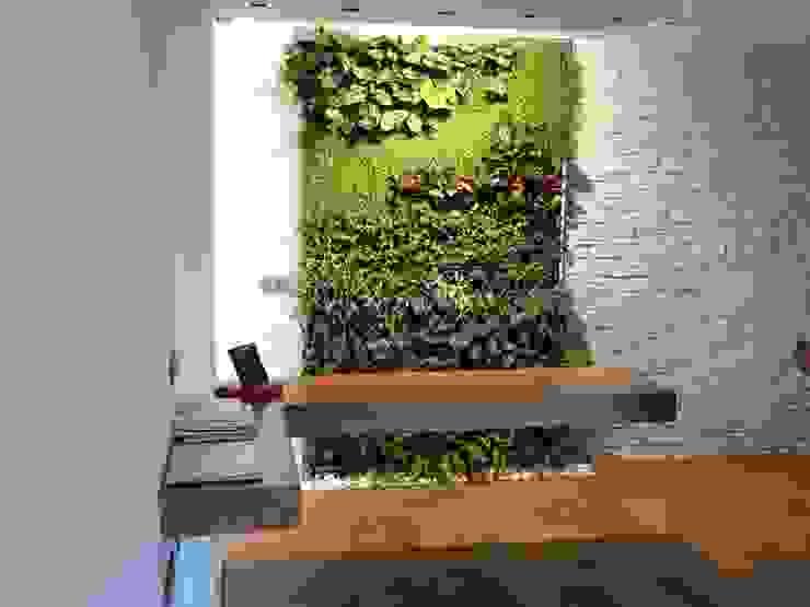 Jardines de estilo  por Terapia Urbana, Diseño de jardines verticales, Moderno