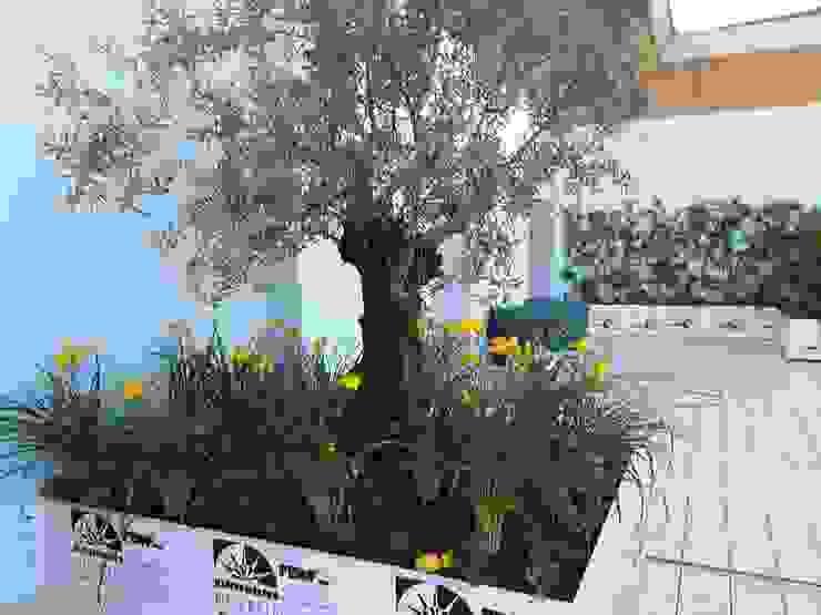 Mediterraner Balkon, Veranda & Terrasse von Febo Garden landscape designers Mediterran Aluminium/Zink