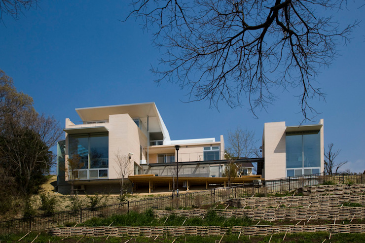 愛車と暮らす家(フェラーリ) モダンな 家 の Kenji Yanagawa Architect and Associates モダン 木 木目調