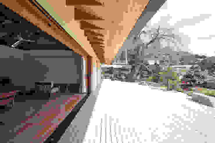 しだれ桜と暮らす家 モダンデザインの テラス の 設計事務所アーキプレイス モダン