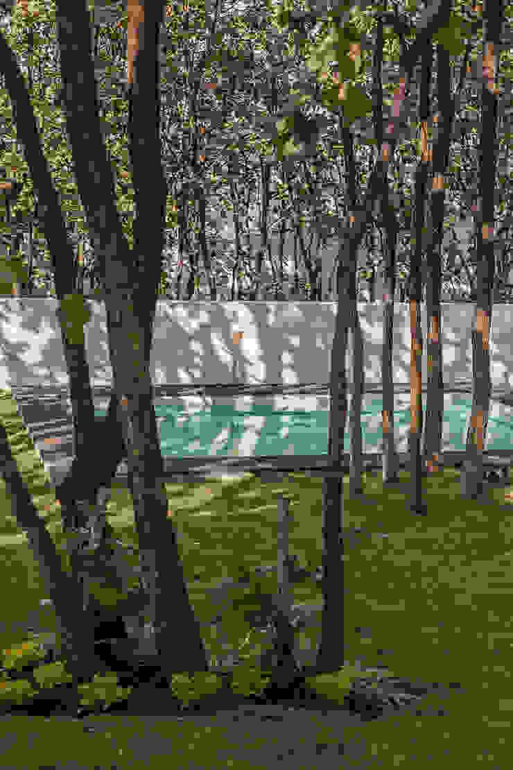 Bosques de Bugambilias Jardines modernos de 2M Arquitectura Moderno