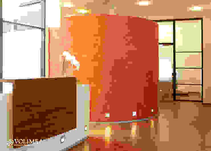 Empfang mit exklusiver Wandgestaltung in volimea Volimea GmbH & Cie KG Industrialer Flur, Diele & Treppenhaus