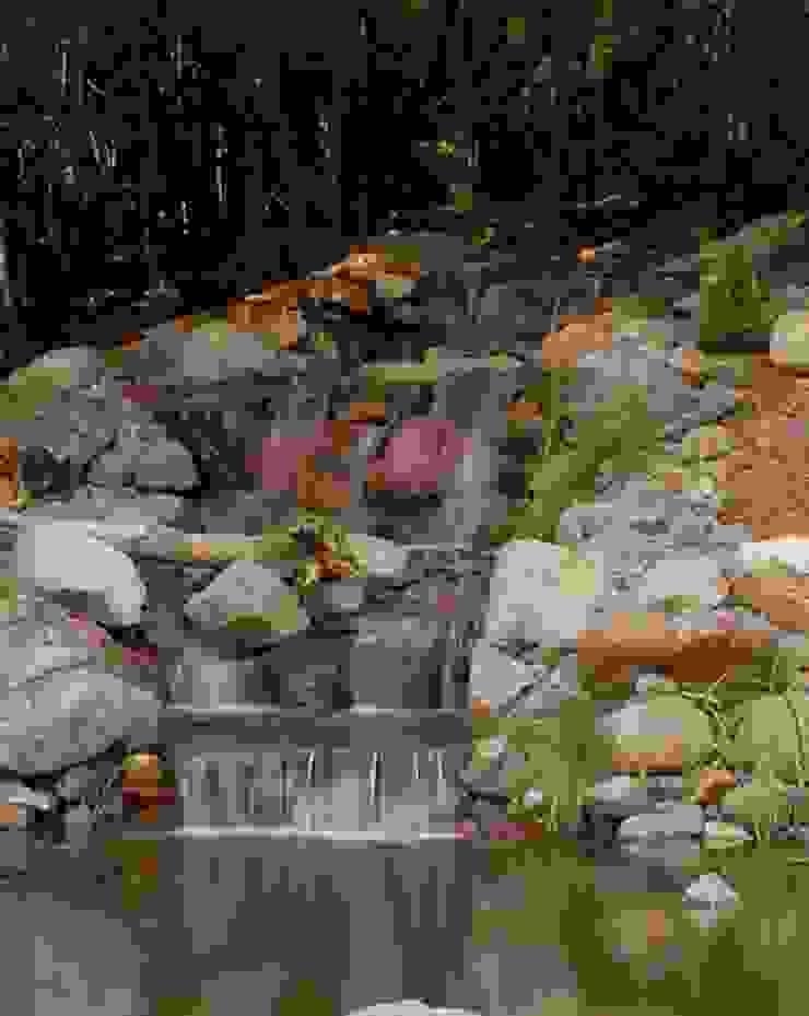 Bio Göl Havuz (Biyolojik Gölet ve Havuz Yapısalları) Jardin asiatique