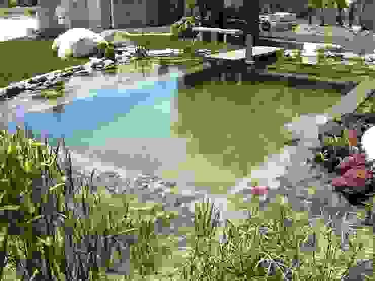 Bio Göl Havuz (Biyolojik Gölet ve Havuz Yapısalları) Jardin rural