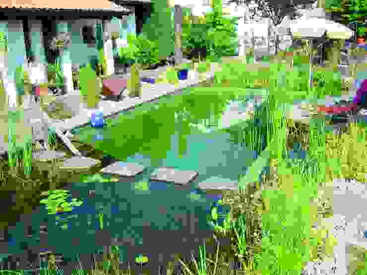 Bio Göl Havuz (Biyolojik Gölet ve Havuz Yapısalları) Piscine rurale
