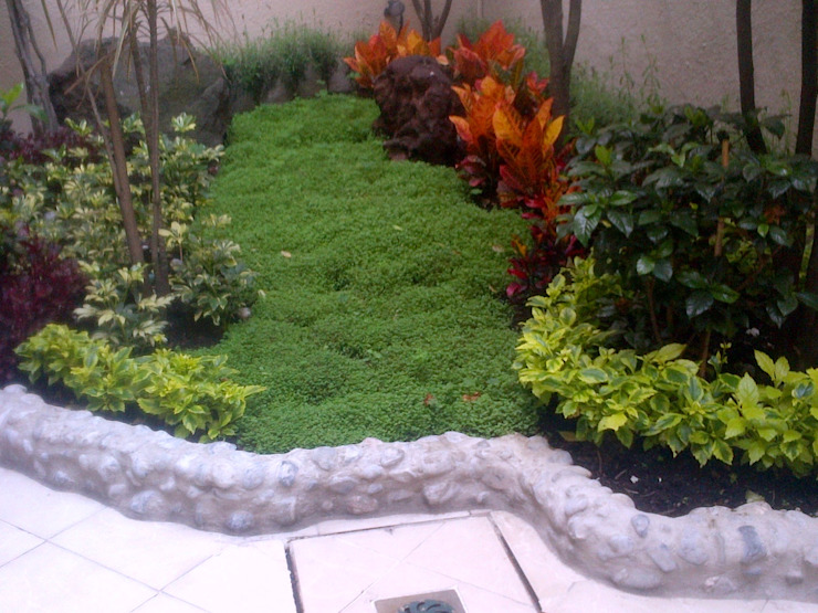 Jardines modernos: Ideas, imágenes y decoración de SERVICIOS MULTIFUNCIONALES Moderno Azulejos