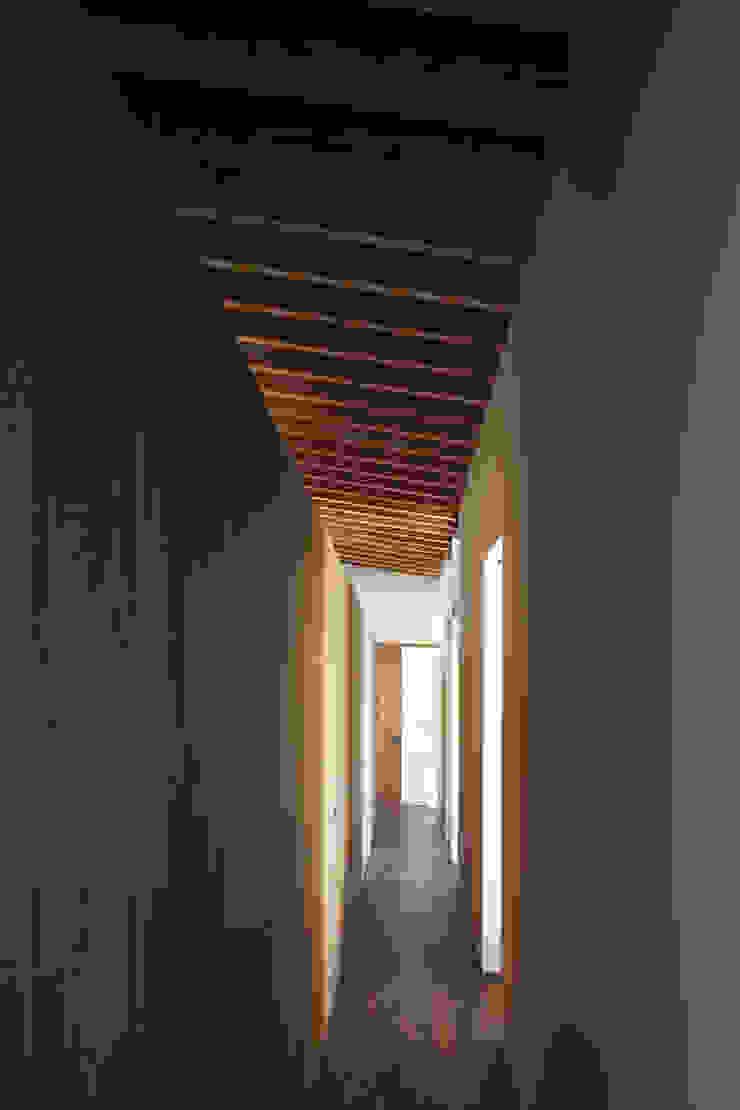 根來宏典建築研究所 ห้องโถงทางเดินและบันไดสมัยใหม่ ไม้ Wood effect