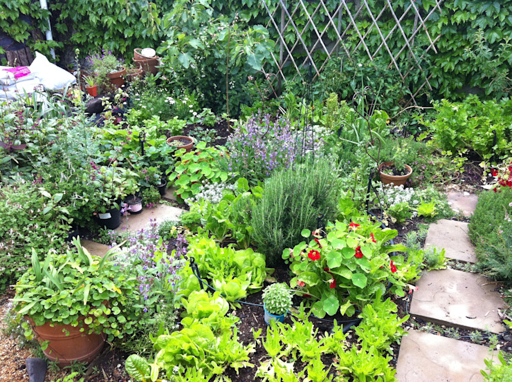 Herb garden Country style garden by Red Daffodil Country