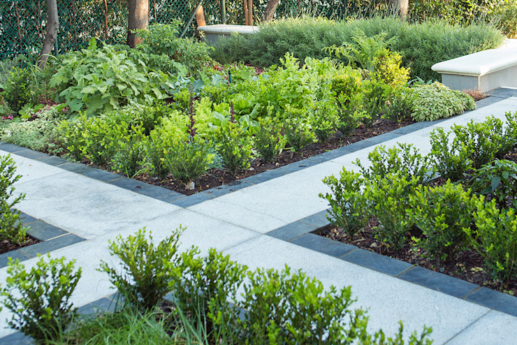 Classic Buxus hedging around herb beds Classic style garden by Red Daffodil Classic