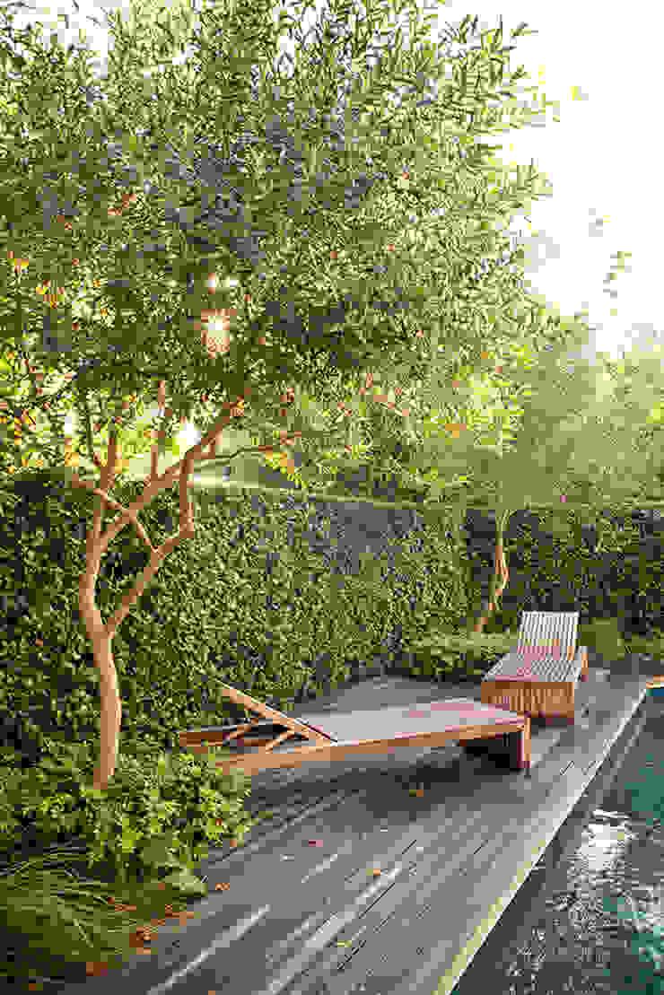 Formal Pool Area Modern Garden by Red Daffodil Modern Wood Wood effect