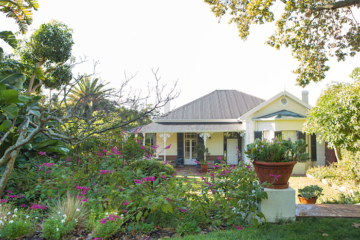 Soft Planting around a Rondebosch Victorian Villa Red Daffodil Colonial style garden
