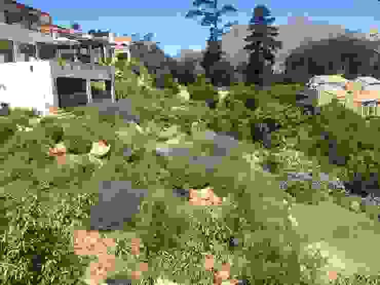 Hout Bay Mediterranean style garden by Red Daffodil Mediterranean