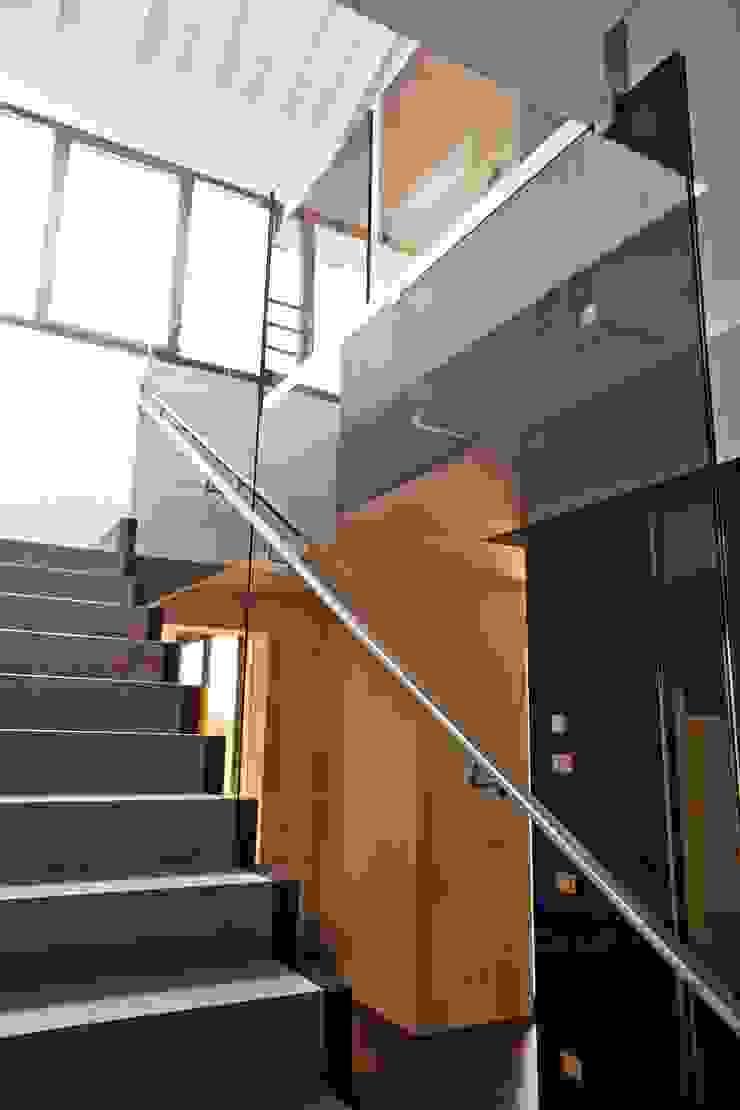 Pasillos, vestíbulos y escaleras de estilo moderno de ALDENA Moderno