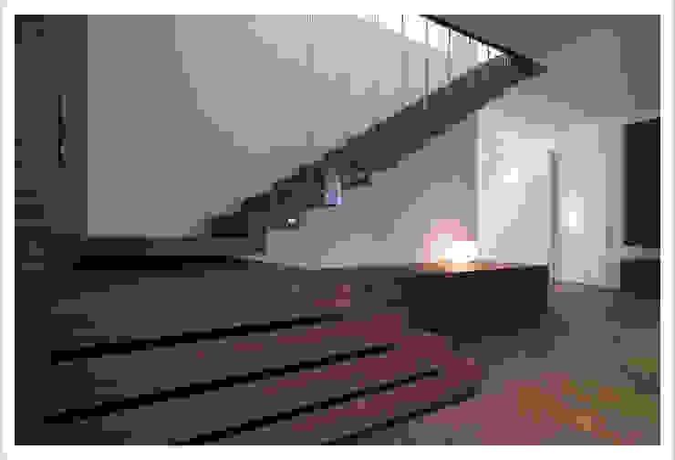 Modern Corridor, Hallway and Staircase by ALDENA Modern