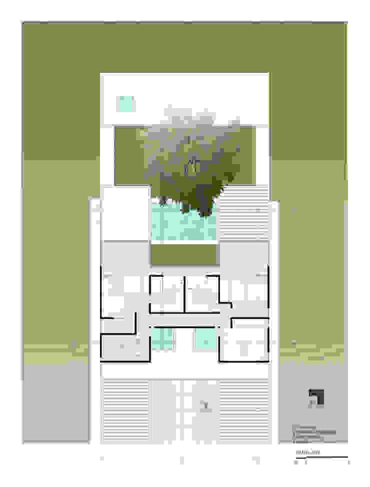 Planta alta Yucatan Green Design