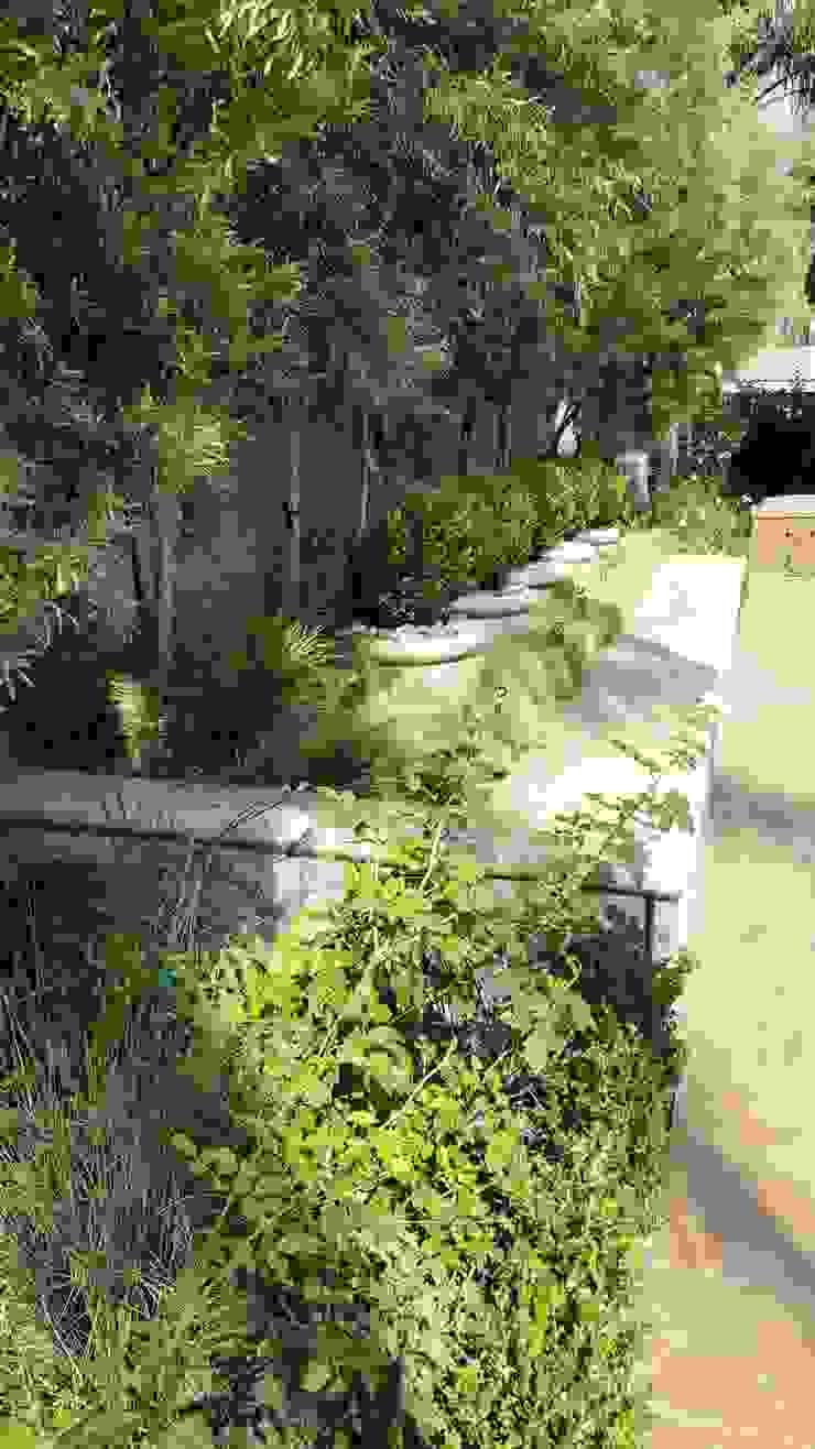 Jardines de estilo mediterráneo de Gorgeous Gardens Mediterráneo