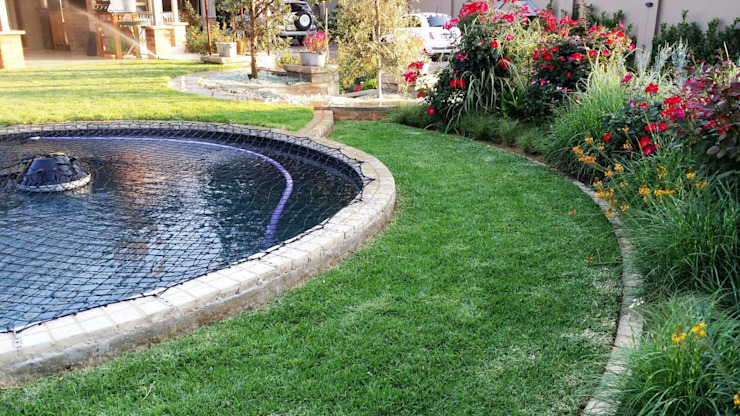 Waterkloof Modern Garden by Gorgeous Gardens Modern