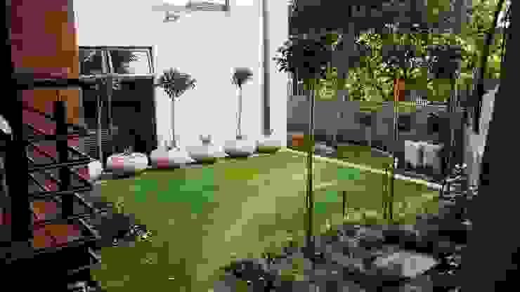 Modern Garden by Gorgeous Gardens Modern