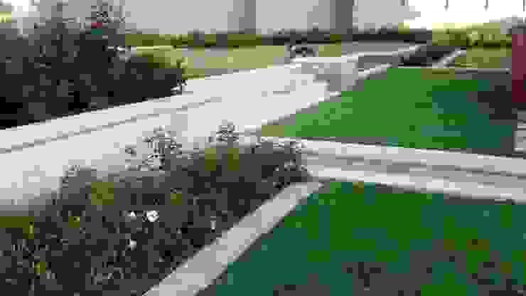 Modern style gardens by Gorgeous Gardens Modern