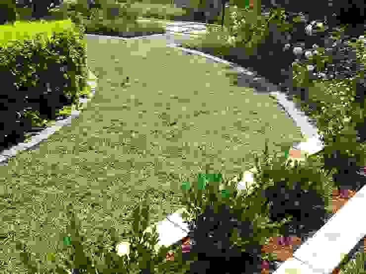 Capital Park Modern Garden by Gorgeous Gardens Modern