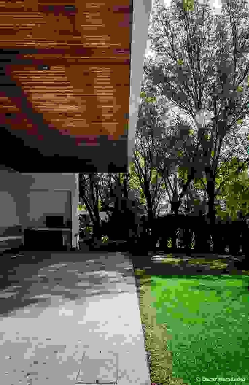 Terraza Pulgas Pandas Dhd Arquitectos By Oscar Hernández