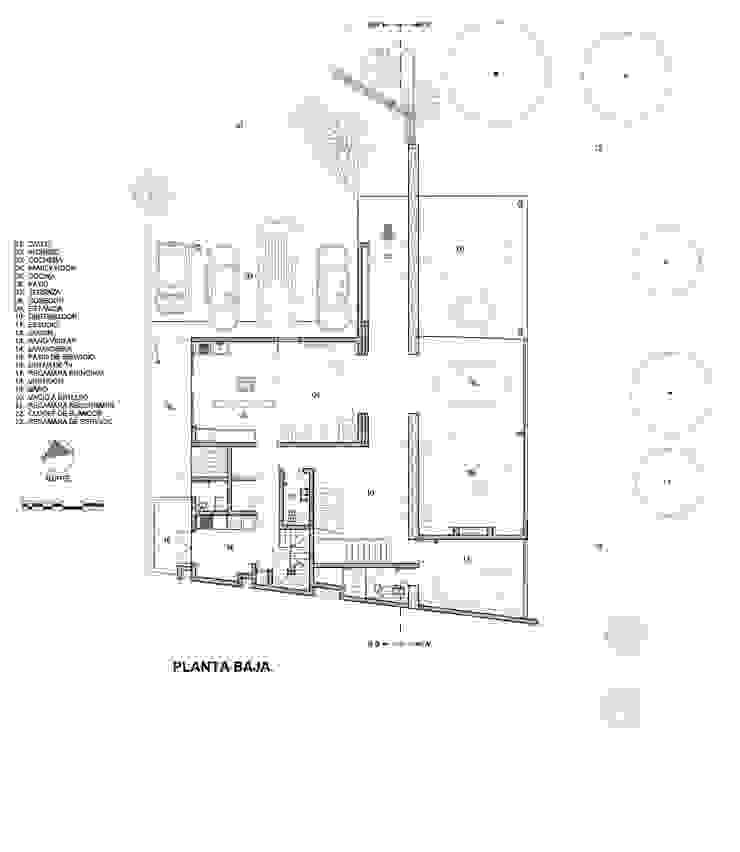 CASA WIP Casas modernas de Trama Arquitectos Moderno