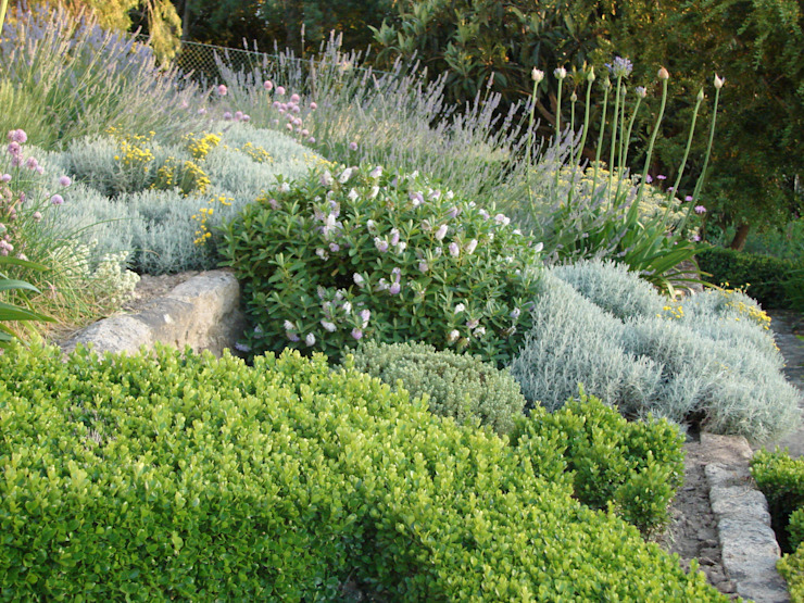 andré nascimento-arquitetura paisagista Jardins mediterrâneos