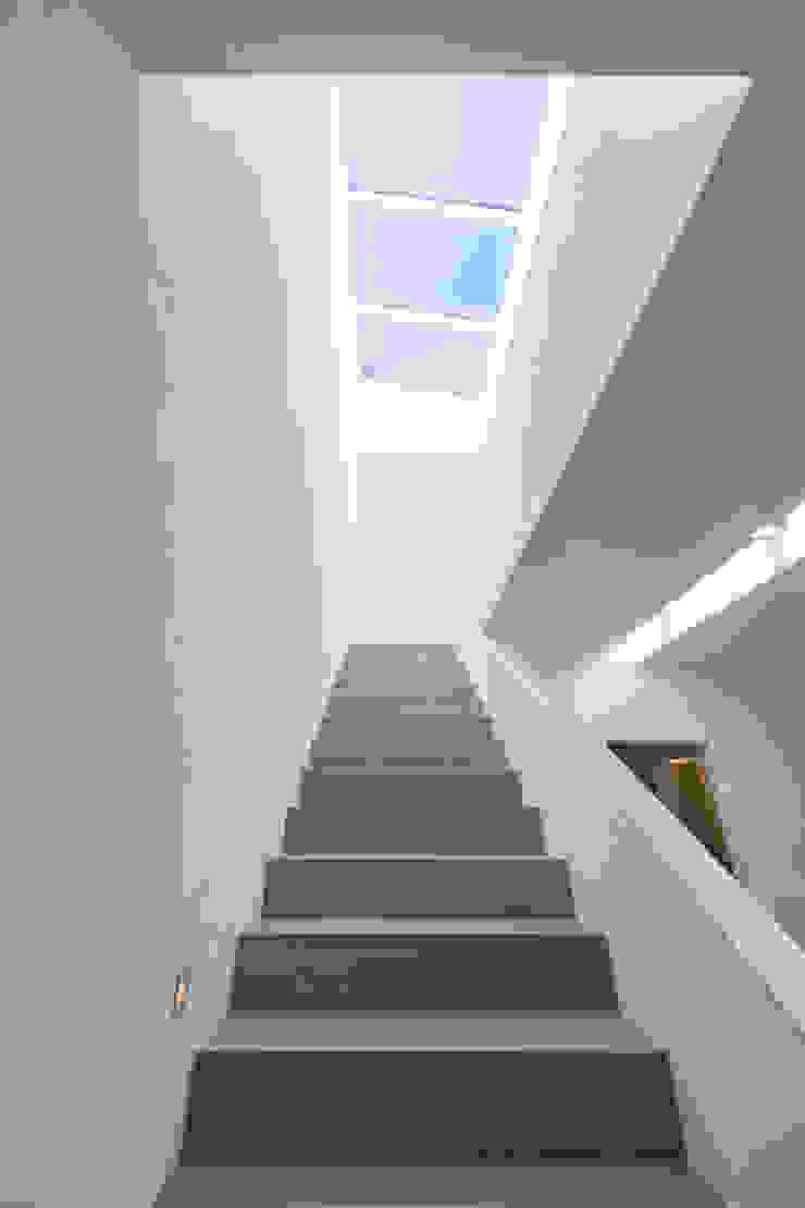 Modern Corridor, Hallway and Staircase by KitzlingerHaus GmbH & Co. KG Modern Wood Wood effect