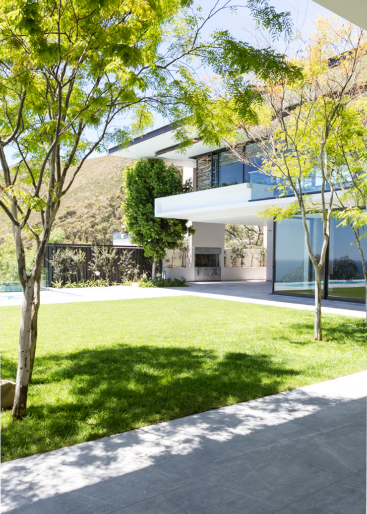 Garden Modern Garden by Jenny Mills Architects Modern