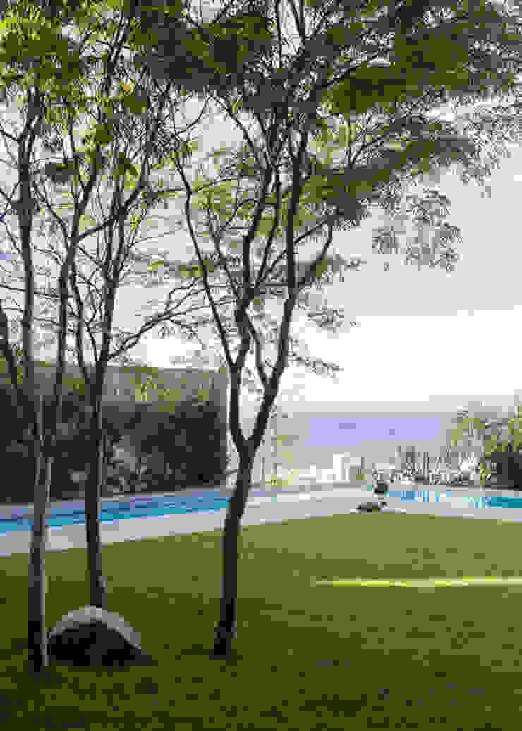 Avenue Fresnaye Villa Modern Garden by Jenny Mills Architects Modern