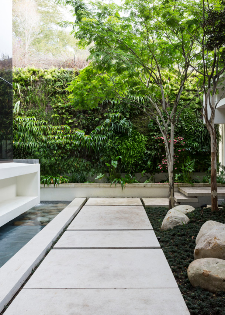 Entrance Courtyard Modern style gardens by Jenny Mills Architects Modern